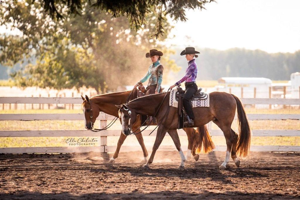 horse-show1b